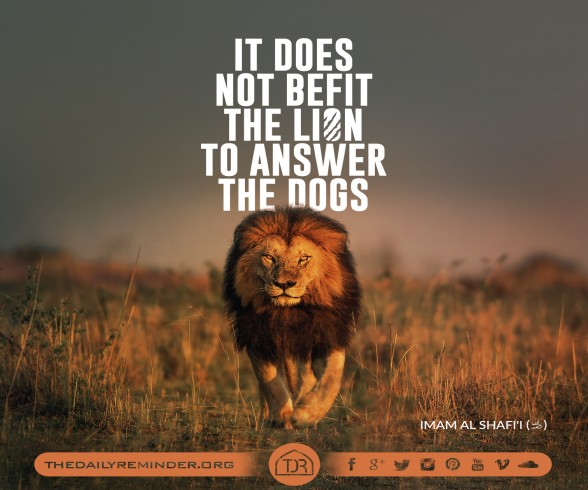 It does not befit the lion