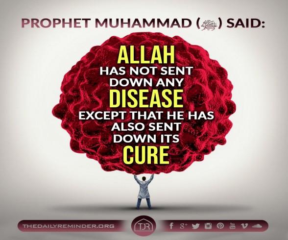 sent its cure