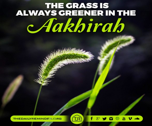 The grass is always greener in the Aakhirah... :)