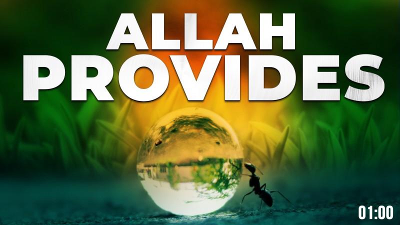 ALLAH PROVIDES! - SURAH AL-QURAYSH